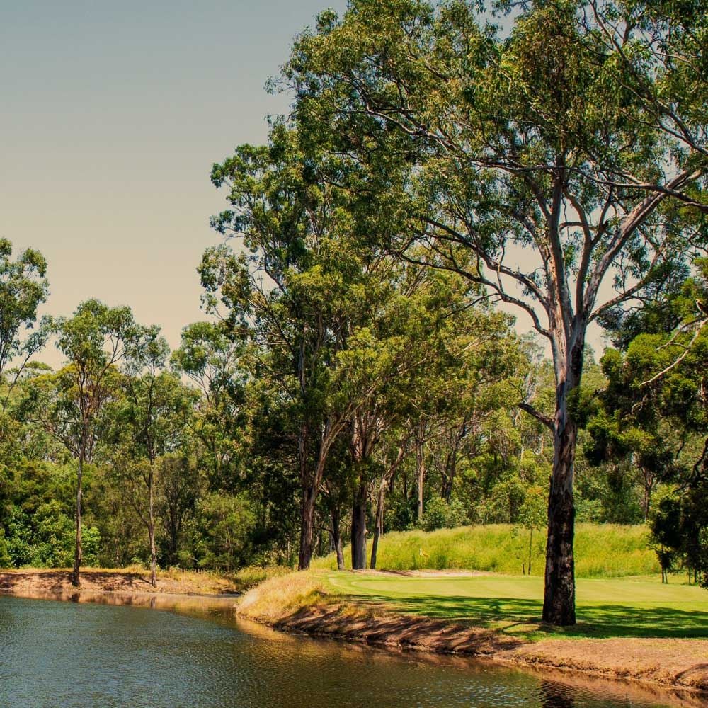 Edmondson Park Outdoor Activities, House & Land Packages in Western Sydney